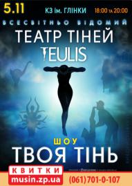 """Театр тіней """"TEULIS"""""""